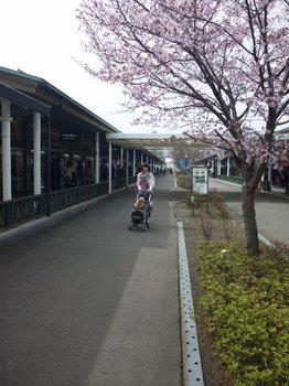 2011-0502 (13).JPG